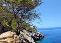 Mallorca-Sa-Foradada-Wanderung-Weg-120x86