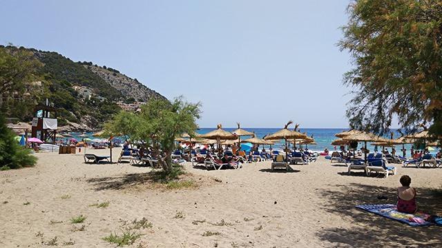 Mallorca-Strandfueher-Canyamel-5