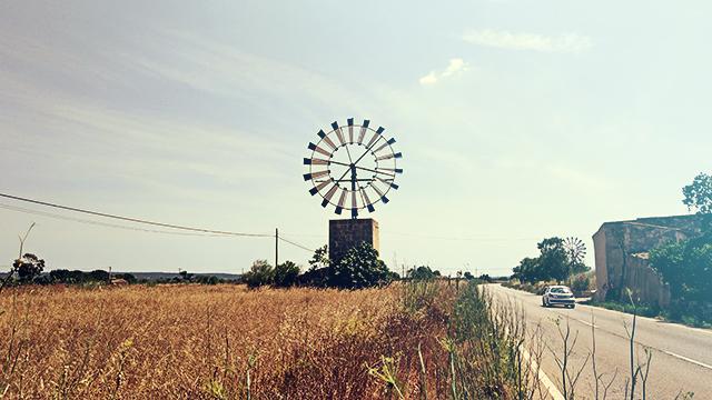 Mallorca-Windmuehle-Feld