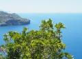Mallorca-Port-de-Soller-Torre-Picada-Wanderung-Ausblick-Far-del-Cap-Gros-Meer-2-120x86