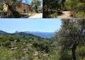 Mallorca-Port-de-Soller-Torre-Picada-Wanderung-Weg-2-120x86