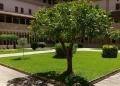 Basilika-Sant-Francesc-Palma-2-120x86