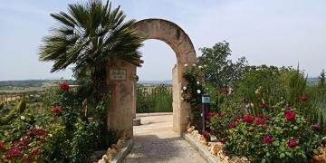 Mallorca-Ariany-Mirador-de-sa-Creu-Ausblick-360x180
