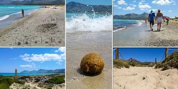 Mallorca-Strand-Son-Serra-de-Marina-Details-2-360x180