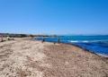 Mallorca-Strand-Son-Serra-de-Marina-Meer-Algen-120x86