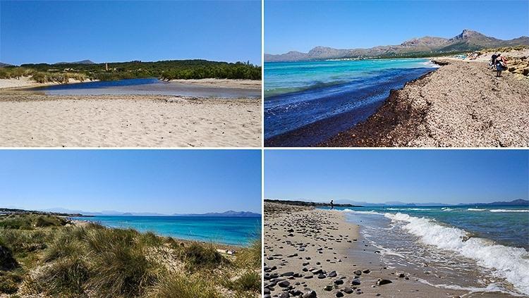 Mallorca-Strand-Son-Serra-de-Marina-Vegetation-Strand-Meer-2-750x423