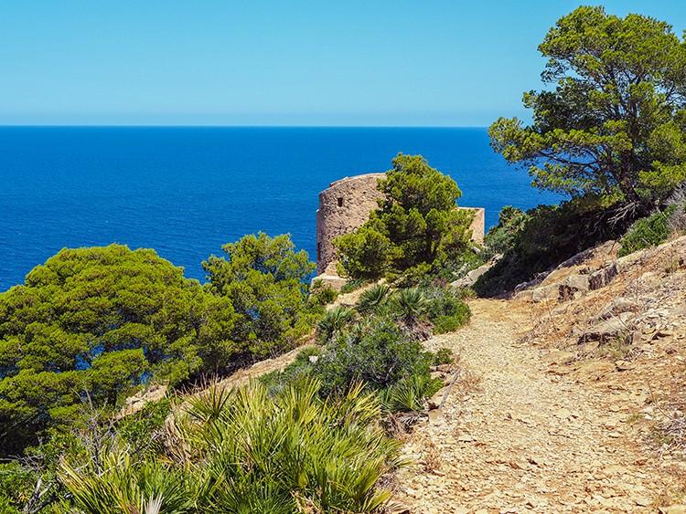 Mallorca-Sant-Elm-Wandern-Torre-de-Cala-en-Basset-14
