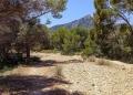 Mallorca-Sant-Elm-Wandern-Torre-de-Cala-en-Basset-6-120x86
