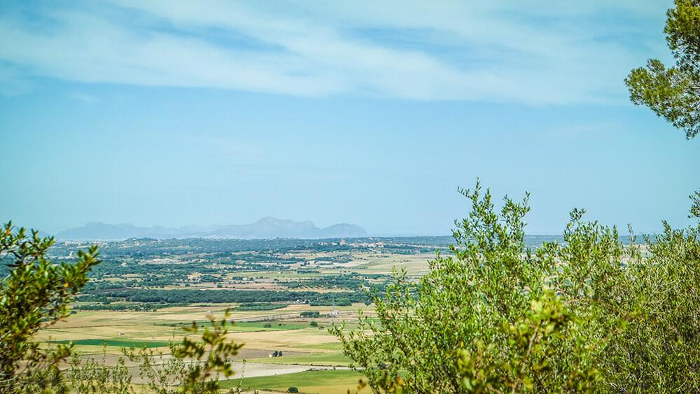 Mallorca-Kloster-Bonany-Petra-Wanderung-17