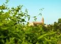 Mallorca-Petra-16-120x86