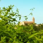 Mallorca-Petra-16-150x150