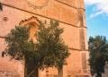 Mallorca-Petra-17-120x86