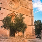 Mallorca-Petra-17-150x150