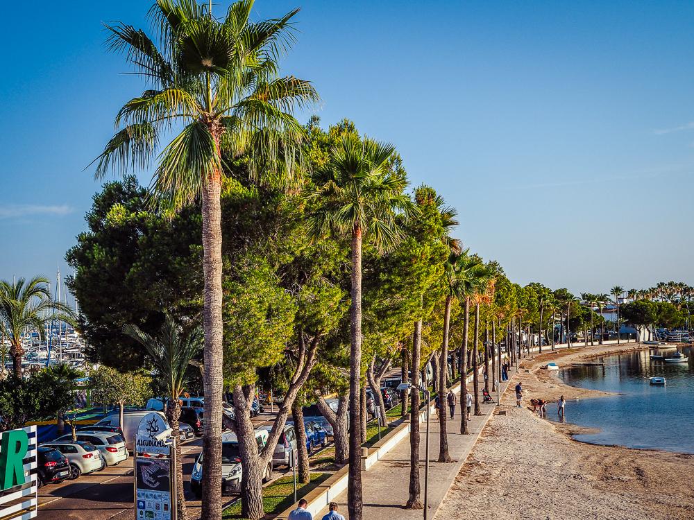 Mallorca-Port-de-Alcudia-Strand-2