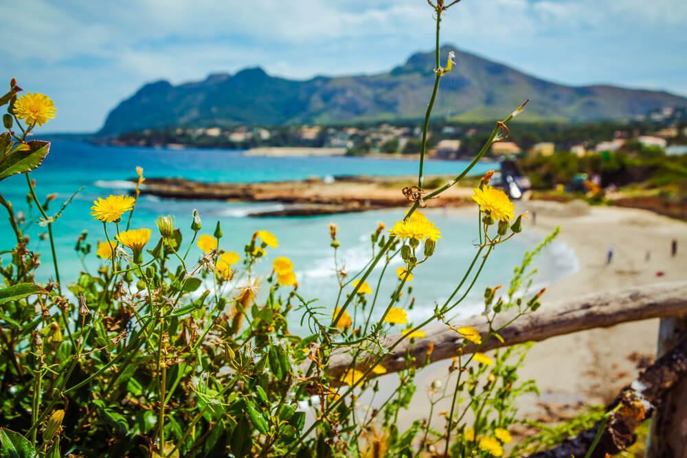 Mallorca-Strand-Playa-de-Sant-Joan-Alcudia-3