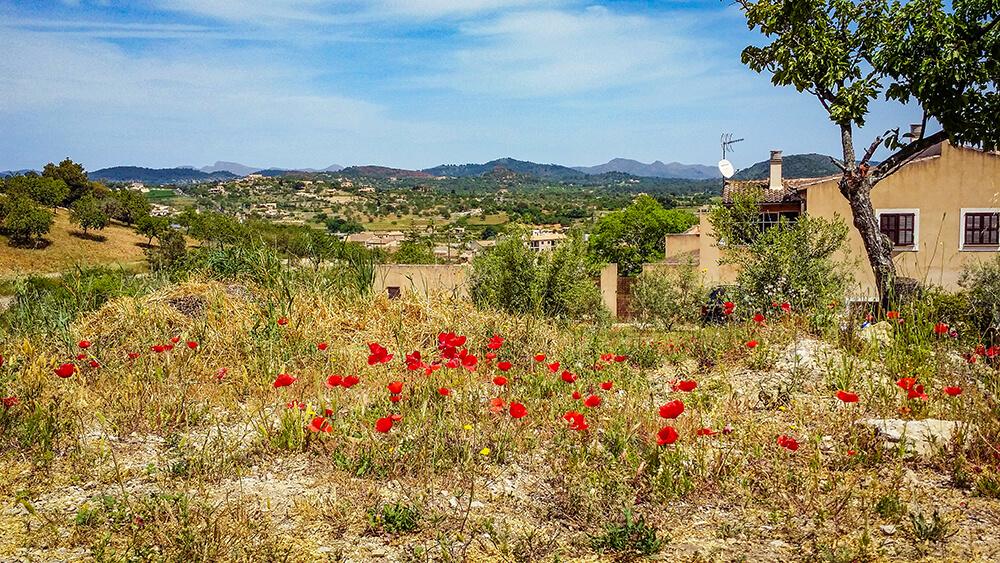 Mallorca-Son-Servera