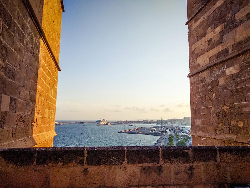 Palma-de-Mallorca-Kathedrale-La-Seu-Dach-16