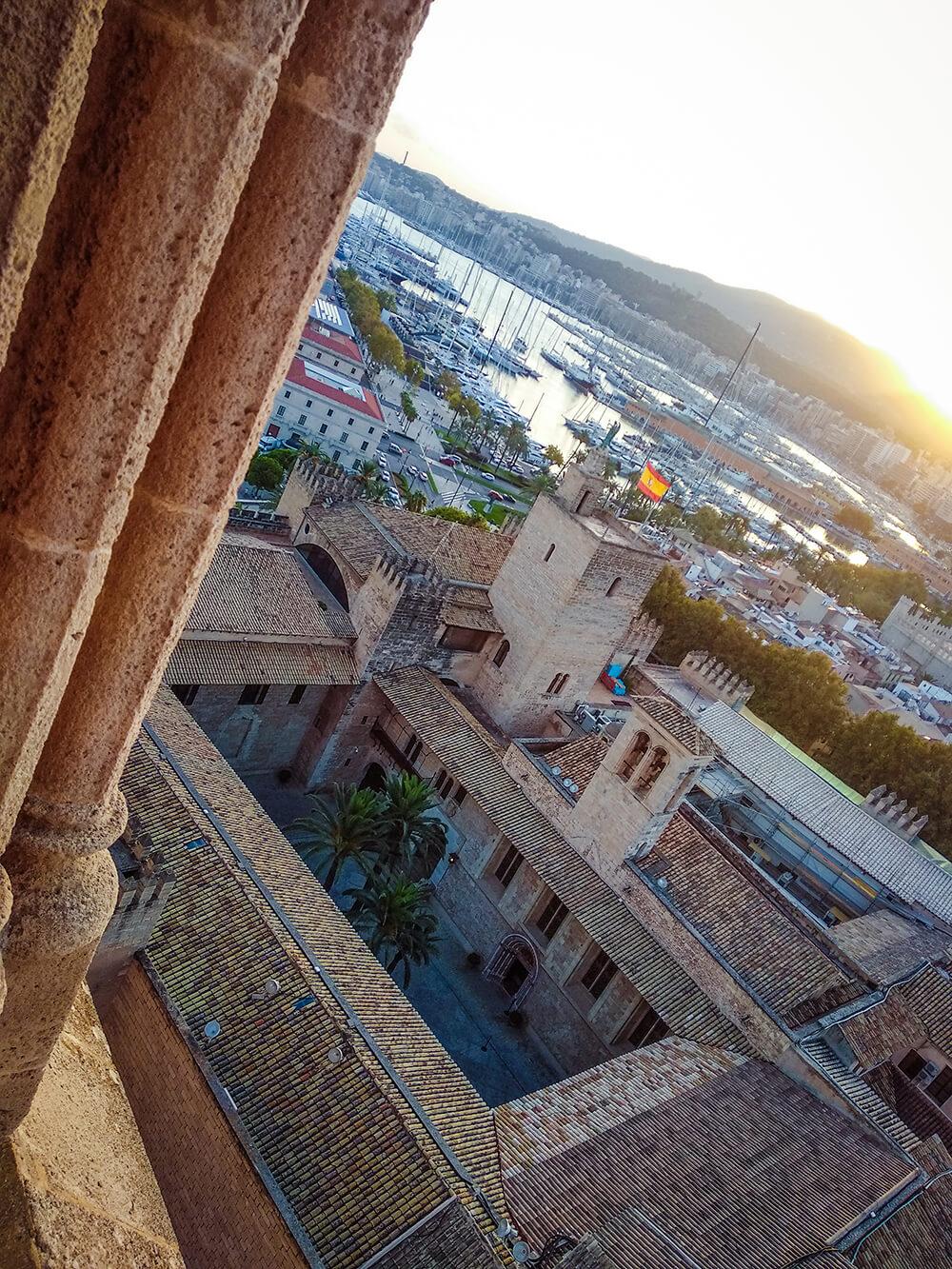 Palma-de-Mallorca-Kathedrale-La-Seu-Dach-30
