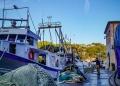 Mallorca-Cala-Figuera-Winter-Boote-Fischfang-2-120x86