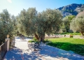 Mallorca-Tramuntana-Finca-Landhotel-Alqueria-Blanca-31-120x86