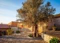 Mallorca-Tramuntana-Finca-Landhotel-Alqueria-Blanca-38-120x86