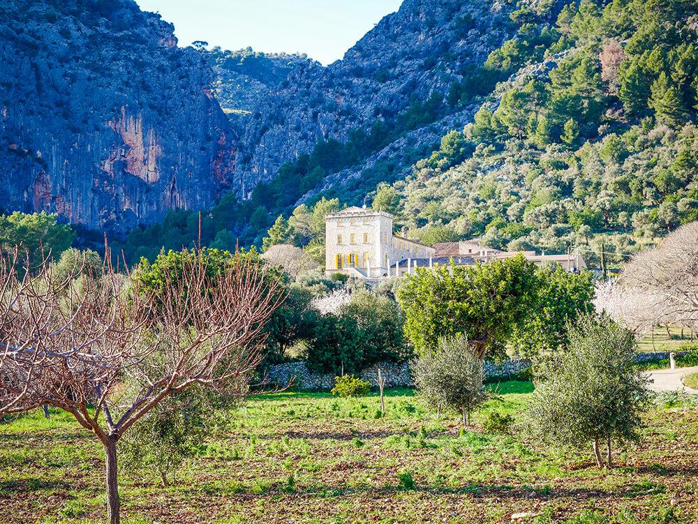 Mallorca-Tramuntana-Finca-Landhotel-Alqueria-Blanca-42