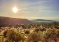 Mallorca-Tramuntana-Finca-Landhotel-Alqueria-Blanca-57-120x86