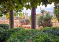 Mallorca-Botanicactus-16-120x86