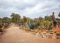 Mallorca-Botanicactus-19-120x86