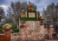 Mallorca-Botanicactus-43-120x86