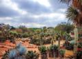Mallorca-Botanicactus-51-120x86