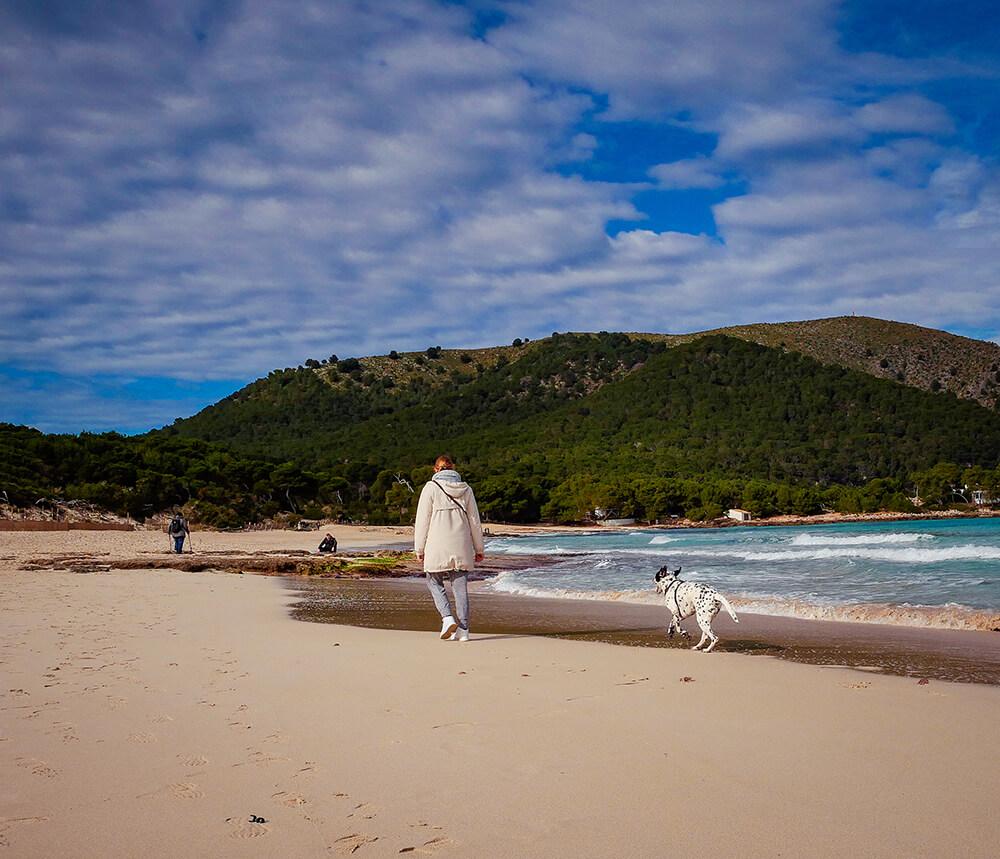 Mallorca-Hunde-Winter-Strand-Cala-Agulla-Cala-Ratjada-3
