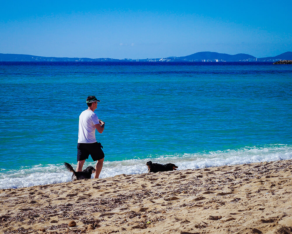 Mallorca-Hunde-Winter-Strand-Can-Pastilla-Playa-de-Palma-Jogger-Sport