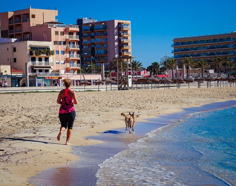 Mallorca-Hunde-Winter-Strand-Can-Pastilla-Playa-de-Palma-Joggerin-Sport