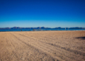 Mallorca-Winter-Port-de-Alcudia-Strand-120x86