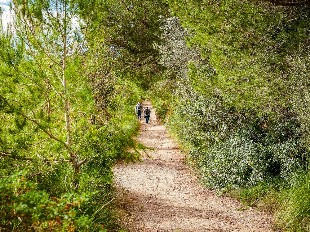 Mallorca-Cala-Ratjada-Agulla-Wanderung-2