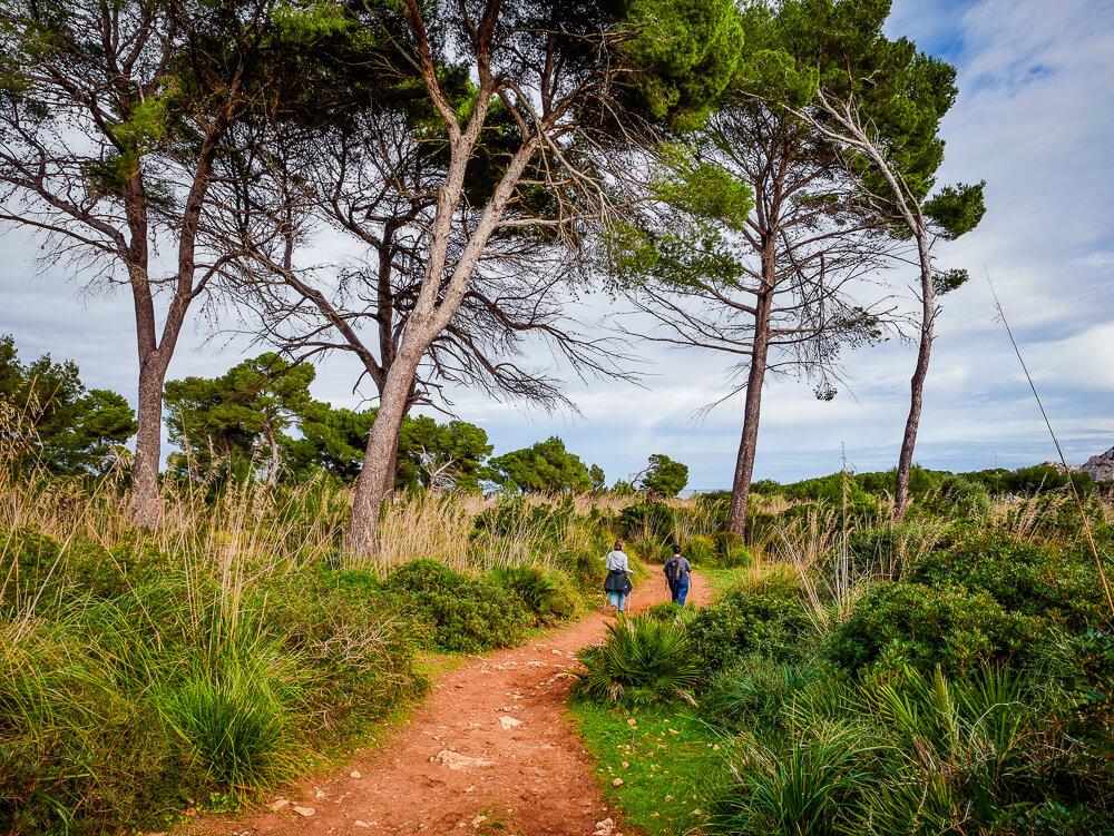 Mallorca-Cala-Ratjada-Agulla-Wanderung-3