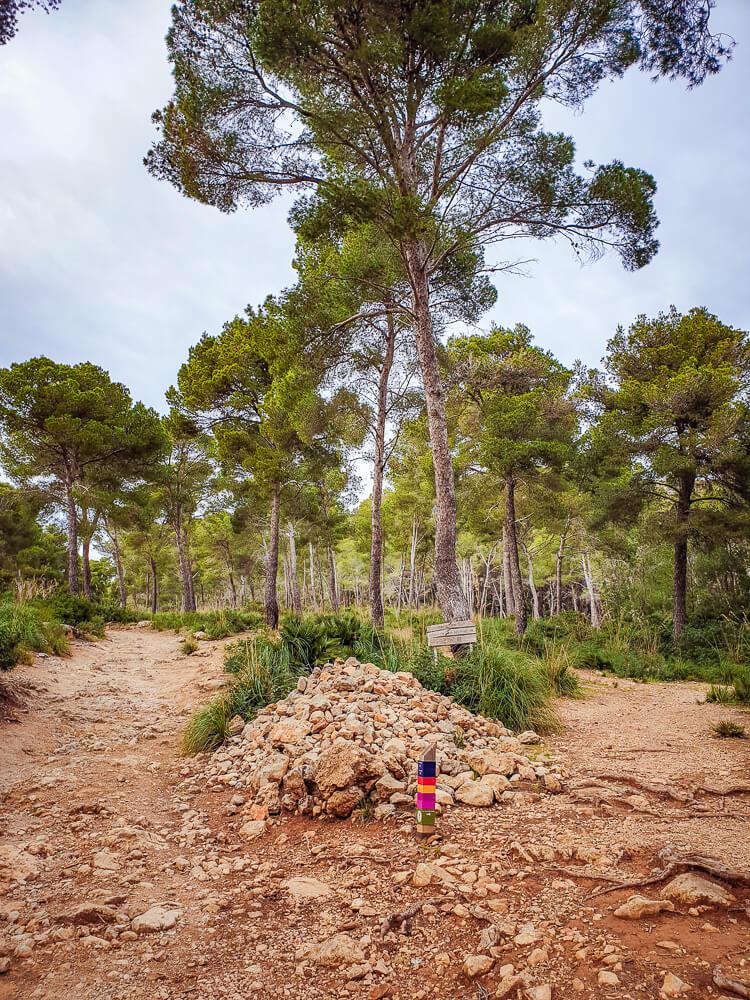 Mallorca-Cala-Ratjada-Agulla-Wanderung-6