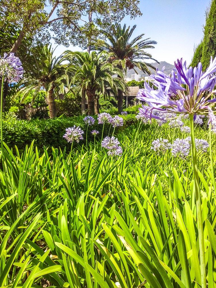 Mallorca-Cala-Ratjada-Villa-March-Park-3