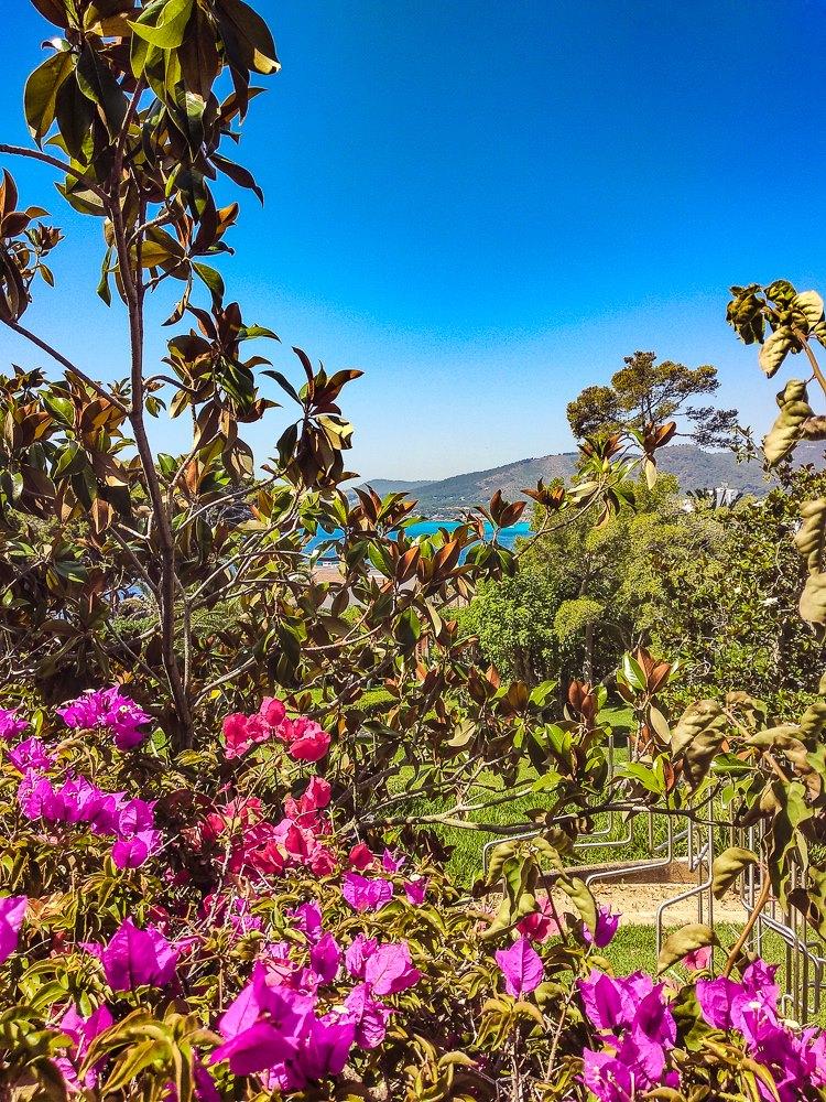 Mallorca-Cala-Ratjada-Villa-March-Park-Ausblick