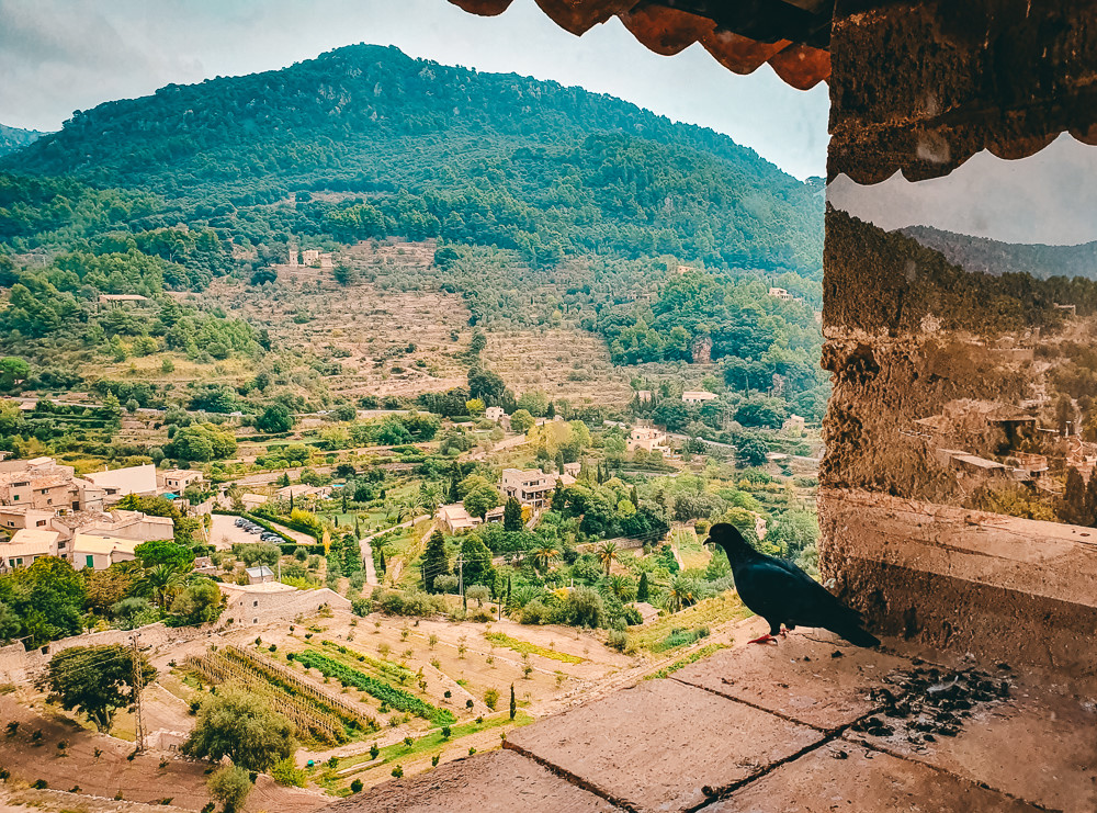 Mallorca-Valldemossa-Torre-Homenatge-Tramuntana-Rundblick-6
