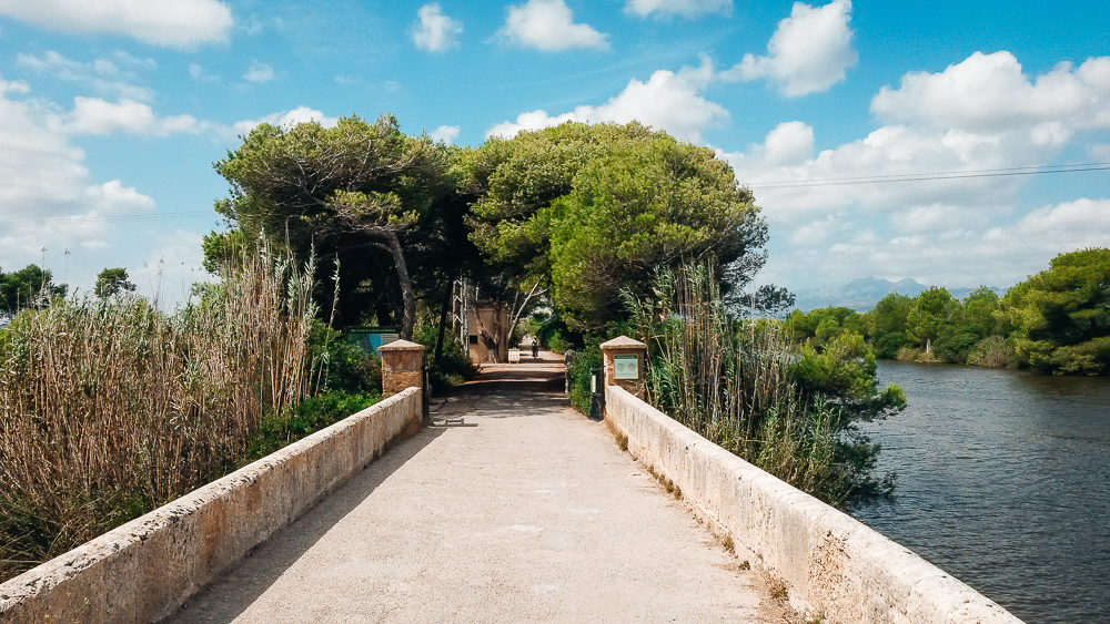 Naturpark-sAlbufera-Alcudia-Mallorca