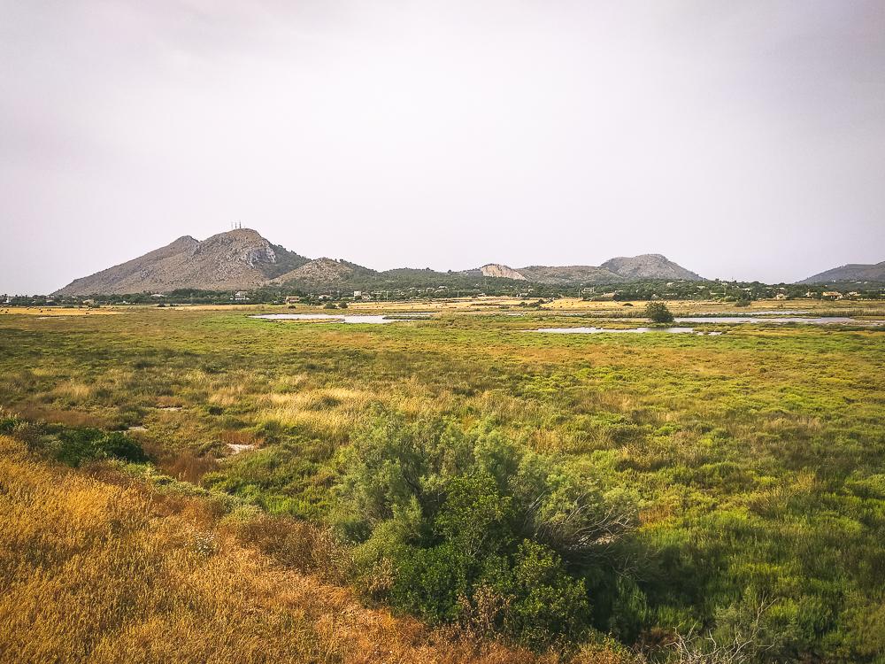 Naturreservat-sAlbufereta