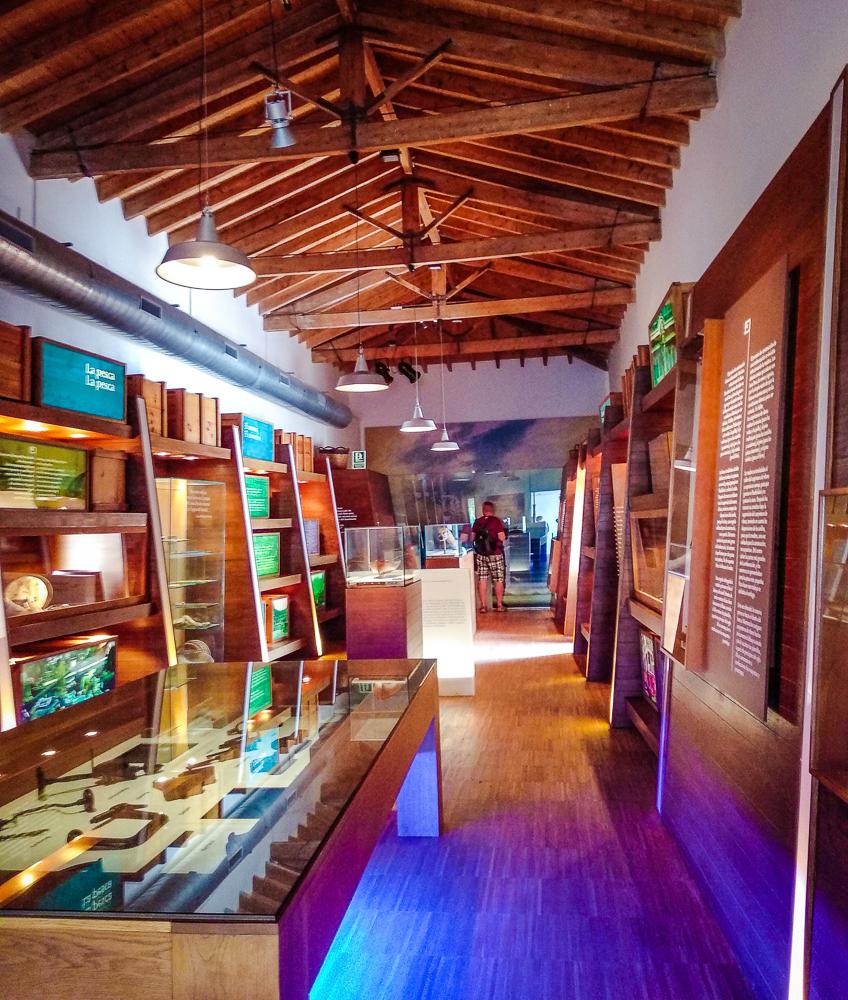 Mallorca-Port-de-Soller-Meeresmuseum-7