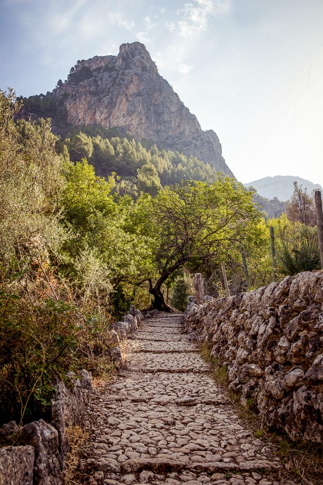 Mallorca-Wanderung-Barranc-de-Biniaraix-Tramuntana-15