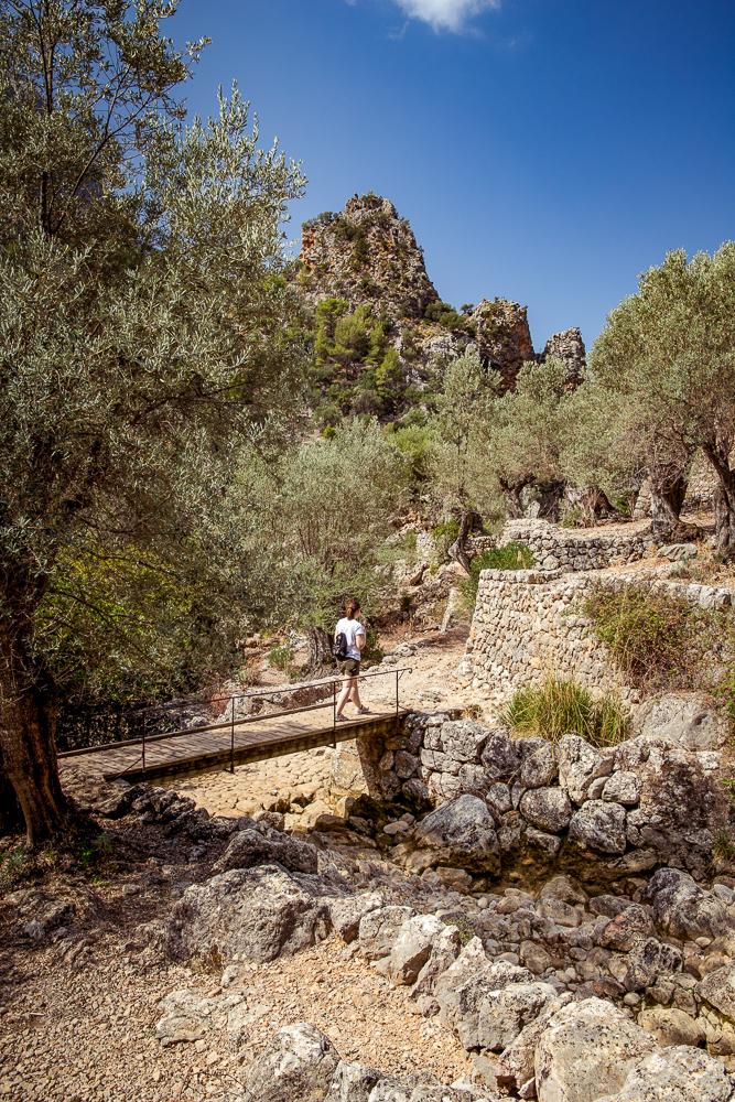 Mallorca-Wanderung-Barranc-de-Biniaraix-Tramuntana-20