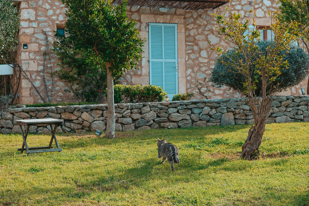 Mallorca-Fincahotels-Ses-Cases-de-Fetget-15