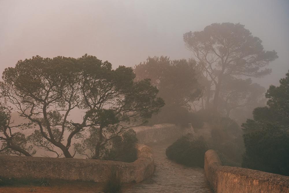 Mallorca-Santuari-de-Sant-Salvador-Sonnenaufgang-Nebel-17