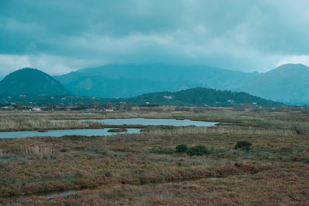 Mallorca-SAlbufereta-Naturpark-12
