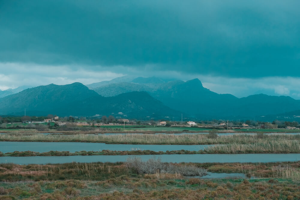 Mallorca-SAlbufereta-Naturpark-13